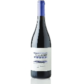 I Cacciagalli Sphaeranera - 2017 - N. 12 Bottles