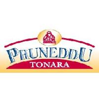 Logo Pruneddu