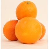 Sicilian Ribera Oranges Table Navel variety (Arance di Ribera da Tavola)