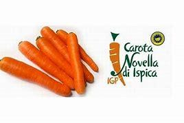 Carote Novelle Italiane