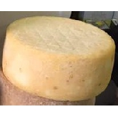 Pecorino Sardo con caglio vegetale - Dolce di cardo stagionato 2 mesi - Azienda Agricola Mureddu Aru