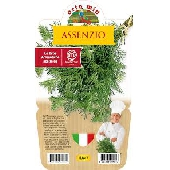 ABSENCE - Plant i en gryde 14 cm - Orto mio