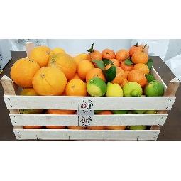 Citrus fruits of Sicily Ribera  wooden crate - Ag. Company  Guarraggi 6 kg. Oranges for juice 6 Kg. Oranges Fioroni Washington 3 kg. Clementine 2 kg. Natural Lemons